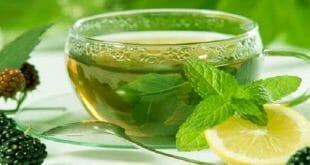 فوائد الشاى الاخضر بعد تناول الطعام