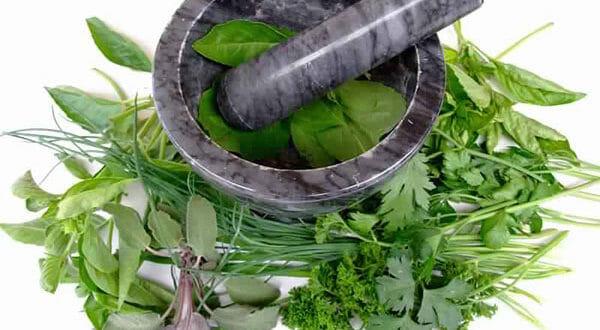هل يمكن علاج الادمان بالأعشاب