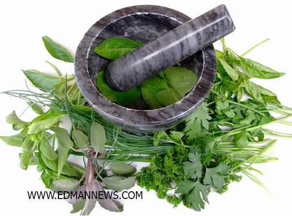 علاج الادمان بالأعشاب